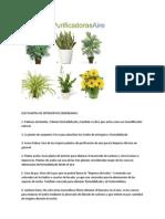 SEIS PLANTAS DE INTERIOR RECOMENDADAS.docx