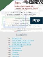 Sistemas de gestão empresarial na automação