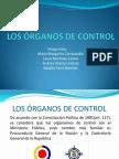 LOS ÓRGANOS DE CONTROL
