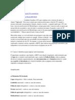 Como fazer paginação no Word 2007-2010 (Trabalhos acadêmicos)