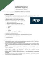 Perfil Del Soporte Tecnico