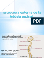 estructura externa