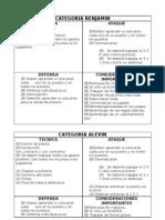 FUBOLSALA PILARISTAS (Borrador Proyecto Por Categorias Octubre 2007[1]