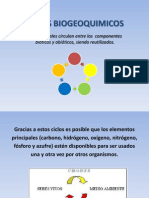 5-Ciclo de La Materia en Los Ecosistemas