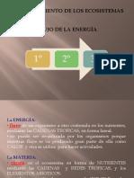 4-FLUJO DE ENERGÍA EN LOS ECOSISTEMAS