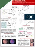 Porfirinas y Pigmentos Biliares