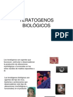 TERATOGENOS BIOLOGICOS