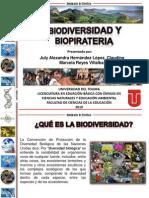 BIODIVERSIDAD_BIOPIRATERIA