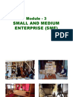 Module 3 Small & Medium Enterprises