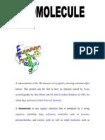 Bio Molecule