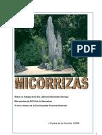 Micorrizas y Endomicorrizas