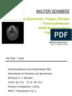 Akutschmerz Z3_essmeister 09