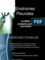 sindromes pleurales