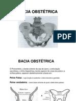 Bacia Obstetrica