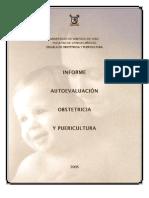 Informe de Autoevaluacion Escuela de Obstetricia y Puericultura