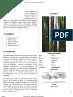 Bambusoideae - Wikipedia, La Enciclopedia Libre