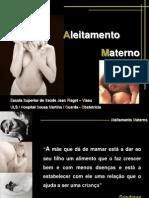Aleitamento materno (1)