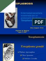 Toxoplasmosis 4