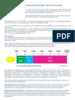 Noções de Planejamento (Estratégico, Tático e Operacional)