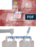 L 3pulp Protection Pulp Capping