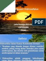 Pemeriksaan Hidrosefalus- LETTA KUSUMA SAMUDRA