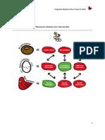 Programa Federación Crecer 2013 versión resumida