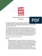 Programa Consejera Territorial Lo Contador