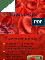 Globulos Rojos
