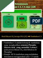 Tumbuhan C3,C4, Dan CAM