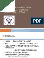 Lingkup Organisasi Yang Berhubungan Dengan Kedokteran Hewan