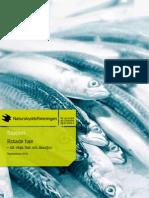 Hotade hav – att välja fisk och skaldjur