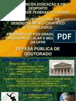 Defesa Publica Tese Doc