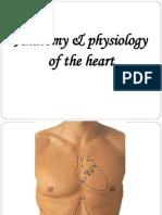 Heart AnatomyPPT