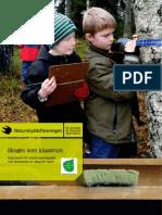 Skogen Som Klassrum. Argument för utomhuspedagogik