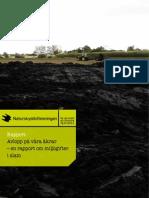 Avlopp på våra åkrar – en rapport om miljögifter i slam