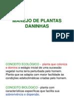 Manejo de Plantas Daninhas