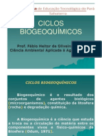 ciclo_biogeoquímico_2012