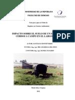2012 Tesis Monteverde Impacto Sobre El Suelo de Un Sistema de Cerdos a Campo en El Largo Plazo