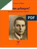 Venanzio Gibillini - Warum gefangen? Ricordi della deportazione 1944-45