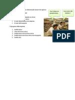 examenalgoritmosoctubre2012