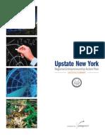 5d2c902279015d REAP Executive Summary - New York