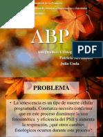 ABP Senescencia