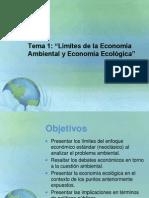 Limites economia ambiental y ecológica