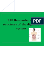 2 07 remember the structures of the digestive system