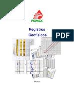 Registros Geofísicos - PEMEX