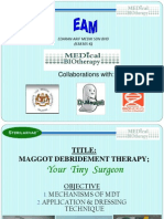 MDT Dr Maggot Slide
