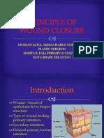 Principle of Wound Closure