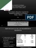 Diversidad y Situación Actual de los Mamíferos Marinos en el Pacífico Norte, México