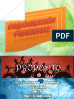 Organizacion Funcional (1)