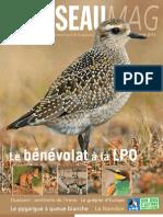 L'Oiseau Magazine n°108 (extrait)